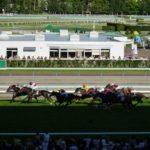 【苫小牧・札幌】馬とふれあう夏旅プラン【2泊3日】