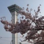北海道の観光【5月】