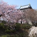 ゴールデンウィークに函館旅行した話【第三部】