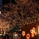 クリスマスのスキー旅行プラン【12月】